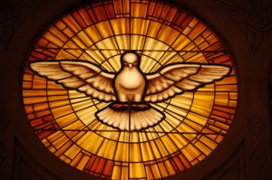 Dove - Symbol of the Holy Spirit